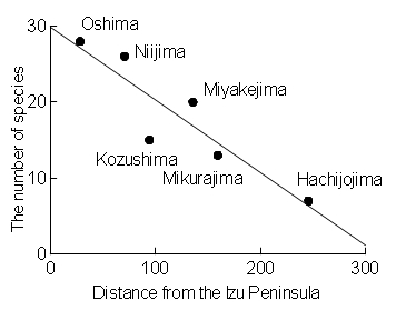 Island Biogeography, species-distance relationship on the Izu islands, Japan